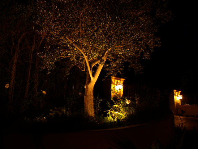 Dos Vientos Lighting Landscape Lights